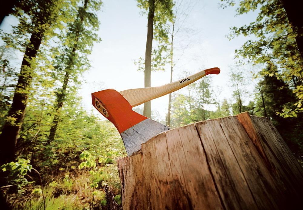 За вырубку дерева для печи воронежцу грозит колония