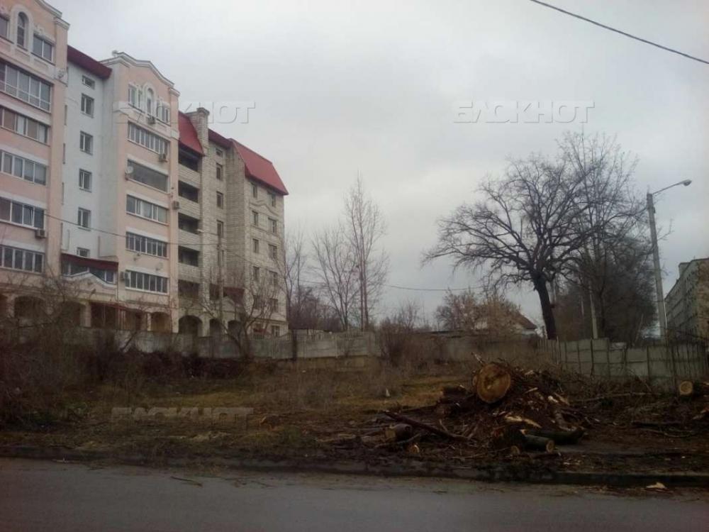 Воронежцы потребовали благоустроить сквер имени героя Бородинской битвы