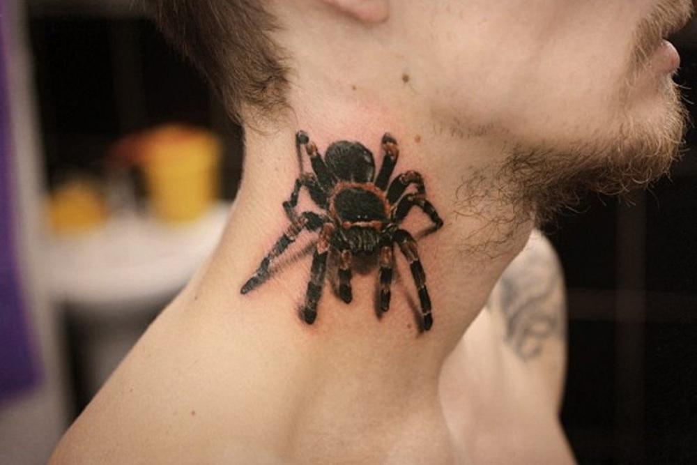 Татуировка паука стоила свободы жителю Воронежа