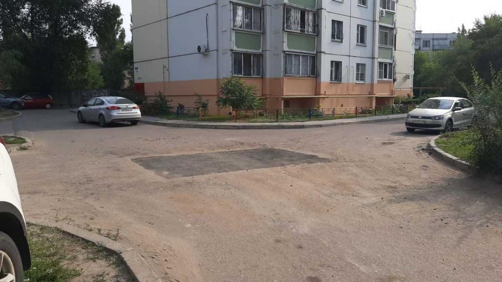Выросшие посередине дороги деревья закатали в асфальт в Воронеже