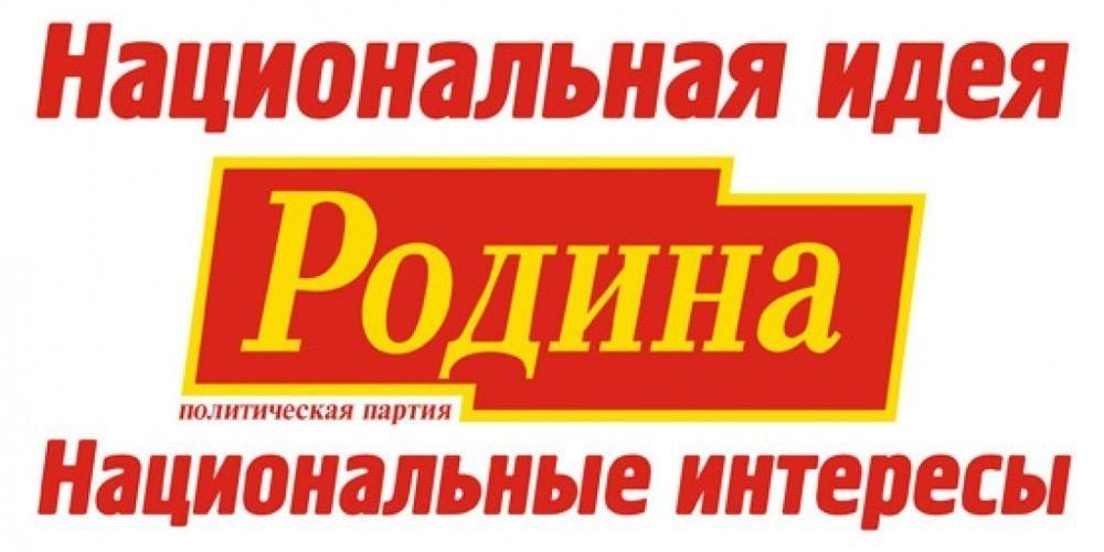 Партия Родина в Воронеже приглашает горожан на пикеты: оплата 200 рублей в час