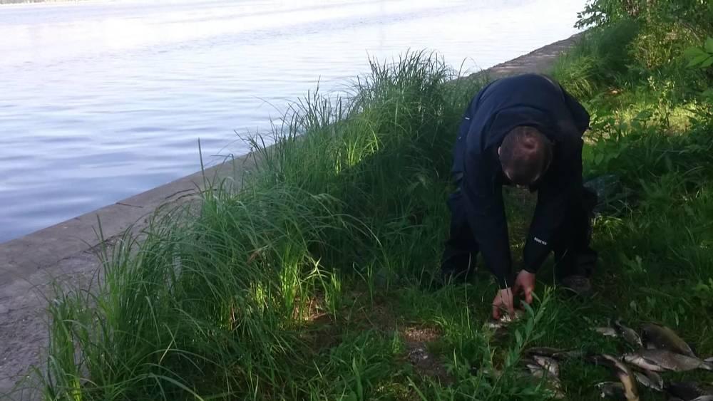 Человеческую ногу выловили из Воронежского водохранилища