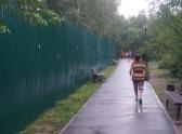 Таким забором огородили десятую часть парка для строительства храма