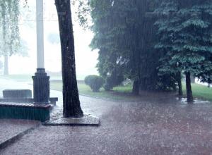 На длинных выходных Воронеж зальет дождем