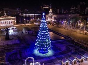 В Воронеже открыли «сезон нытья» про новогоднюю елку