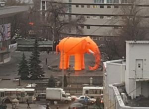 Гигантского оранжевого слона в центре Воронеже приняли за галлюцинацию