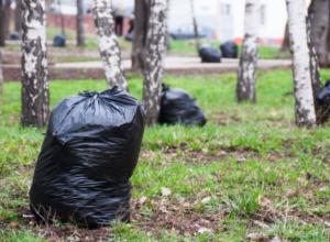 Воронежцам предложили объединиться для очищения родного города