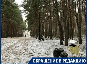 Благодаря вам Северный лес привели в порядок! – читательница «Блокнота Воронеж»