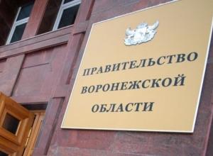 Александр Гусев пока не тронул воронежское правительство