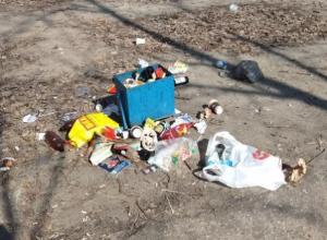 Последствия отдыха «людосвинов» сфотографировали в Воронеже