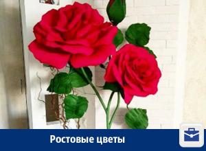 Ростовые цветы в Воронеже