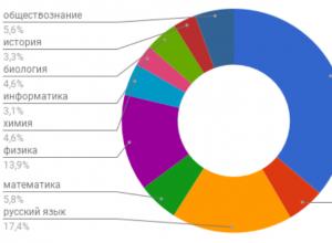 Инфографика: самые востребованные у воронежских школьников репетиторы