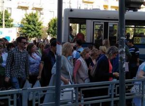 Ежедневные пробки из пешеходов показали на фото в Воронеже