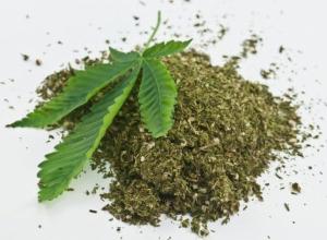 У жителя Воронежской области изъяли 800 граммов марихуаны