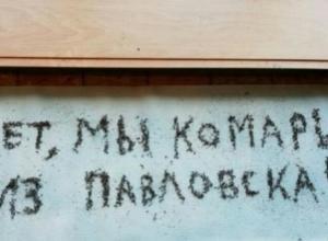 Воронежцы выложили надпись трупами комаров