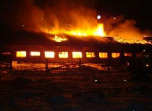 В Воронежской области ночью сгорели трактор и овцеферма
