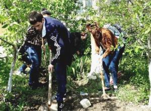 В Воронежской области вскрылись нарушения трудовых прав школьников