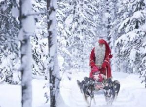 Стало известно, какая погода будет на Новый год в Воронеже