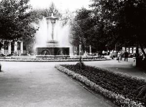 Как выглядел парк «Орленок» 50 лет назад показали воронежцам