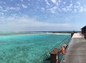 Из воронежского аэропорта можно улететь на Мальдивы