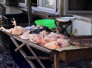 В Воронеже продавали опасное для здоровья мясо