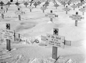 Воронежцев ужаснули фото немецкого кладбища на месте Кольцовского сквера