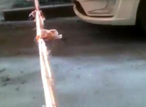 Воронежские бабушки платочками перекрыли въезд машин во двор