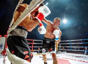Зрелищный нокаут сделал воронежца Сергея Шарапова чемпионом России по боксу