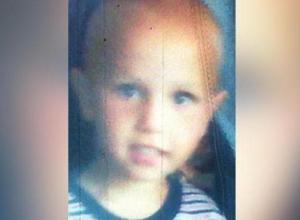 Волонтеры Воронежа просят помочь с поисками пропавшего трёхлетнего Артема