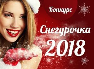 Стартовало голосование в конкурсе «Снегурочка-2018»