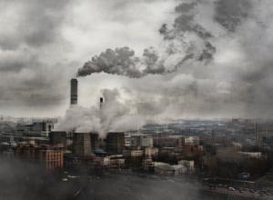 Мусорный ветер рассорил главу района и депутатов в Воронежской области
