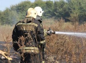 Воронежцев предупредили о запахе гари после лесного пожара в Сомово