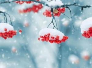 Синоптики рассказали, когда в Воронеж вернется снежная зима
