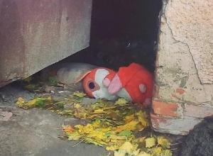 Трагическая судьба игрушки сделала впечатлительную жительницу Воронежа философом