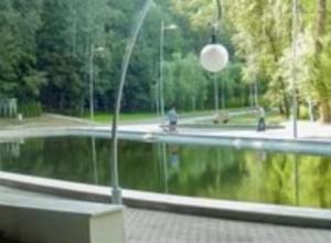 3-летний ребенок чуть не утонул на озере в парке «Динамо» в Воронеже