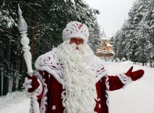 Визит Деда Мороза обойдется воронежцам в 1377 рублей