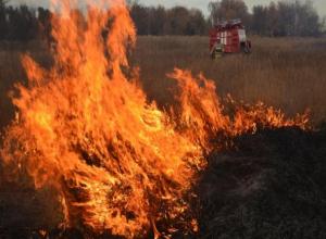 Воронежцев предупредили о риске ландшафтных пожаров