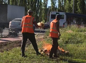 Воронежцы заступились за рабочих, сжигающих мусор на газоне