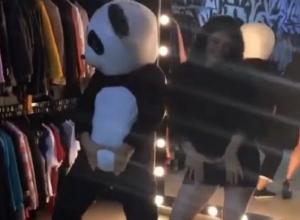Танцевальный батл сексуальной брюнетки из Воронежа с пандой попал на видео