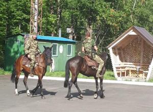 Инспекторы на Ириске и Буяне задержали сборщиков черники в Воронежском заповеднике