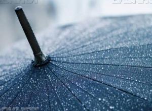 К концу рабочей недели в Воронеже похолодает и пойдут дожди