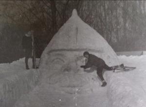 Воронежцам показали, как встречали Новый год 45 лет назад