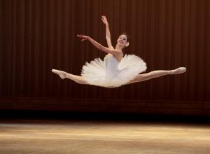 В Воронежском театре оперы и балета выступят блестящие танцоры