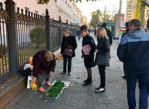 Власти Воронежа прогнали с центральных улиц торгующих пенсионеров