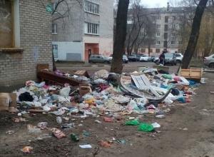 На левом берегу Воронежа люди встретят Рождество среди тонны помоев