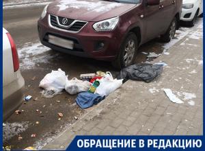 Любимое место молодоженов в Воронеже превращают в помойку