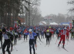 Около воронежского спорткомплекса «Олимпик» губернатор сказал расширить парковку