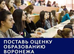 Лишение аккредитаций и травести в вузах стали главными особенностями воронежского образования: Итоги 2016 года