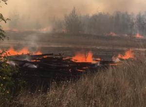 Опубликованы результаты проверки воздуха из-за пожара на полигоне Погоново