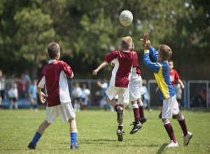 В Воронежской области 2 млрд направлено на развитие спорта